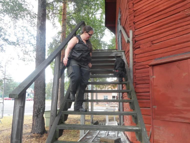 Kicki och Jäger klarar trätrappan galant.