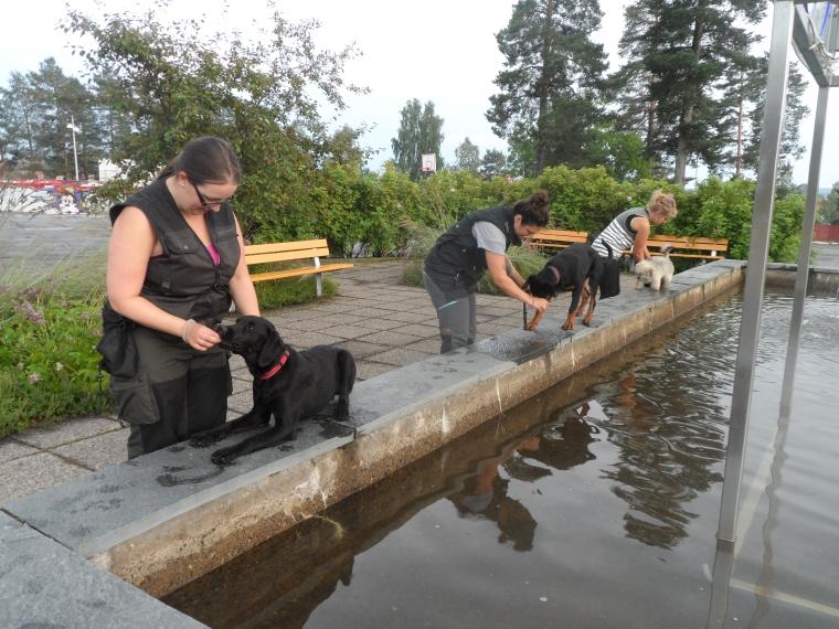 Här tränar delar av kursgänget på att balansera invid fontänen.