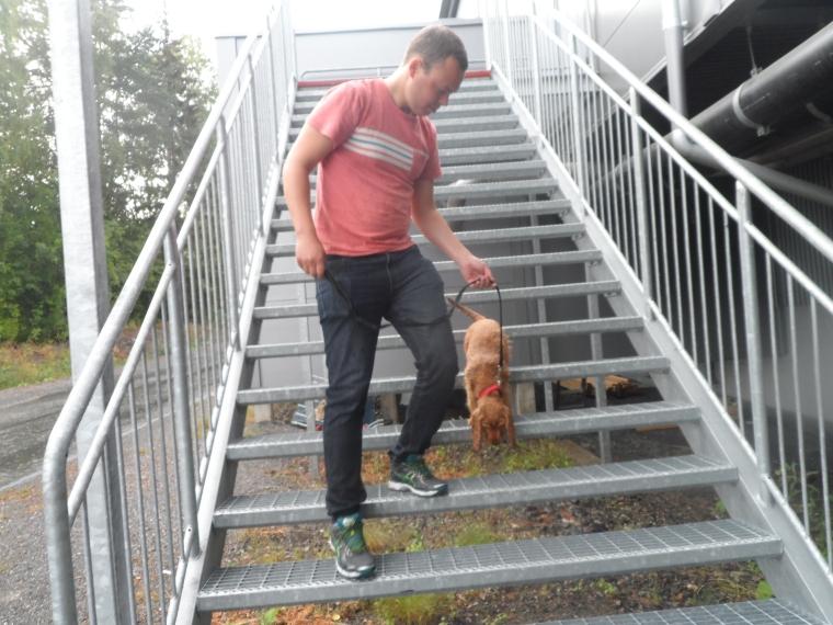 Per och Valle gick upp och ned för gallertrappan.