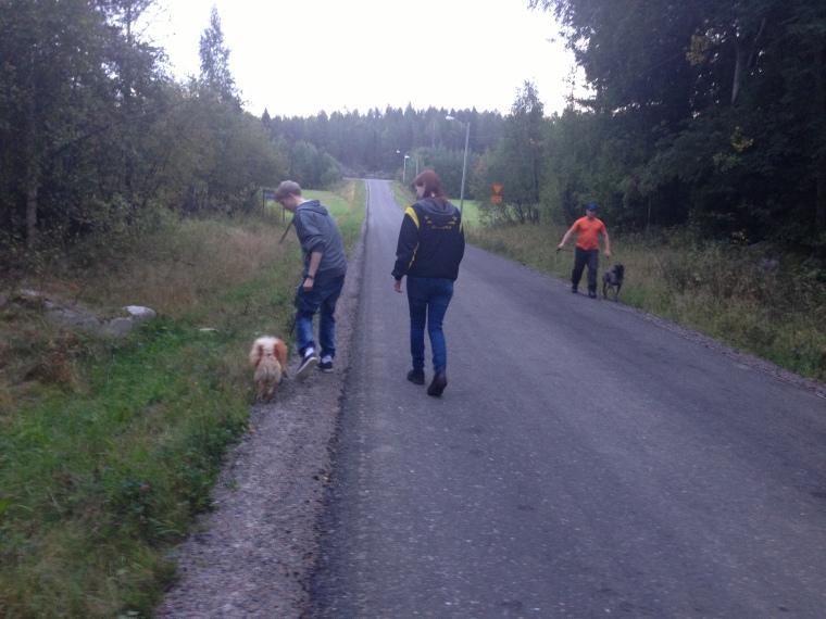 Efter några möten med riktigt långt avstånd kunde vi genomföra möten på byavägen utan problem.
