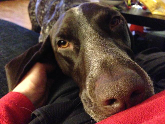 Blicken. Som sjuk möts man av ofta en uttråkad blick.