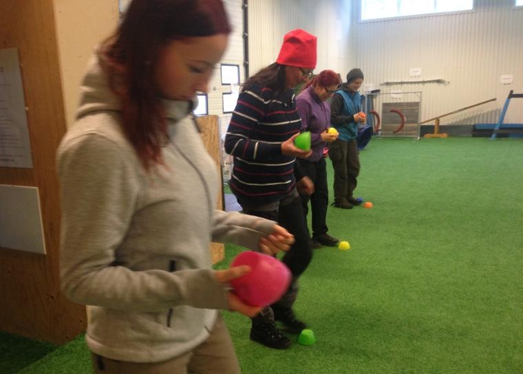 En bild från andra dagen då deltagarna lade ut spår på konstgräset i träningshallen. Skålarna används som riktmärken på var spåren börjar.