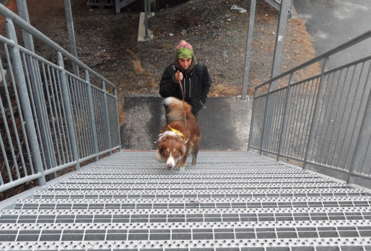 Anna Jonsson och Lad var trygga i trappan.