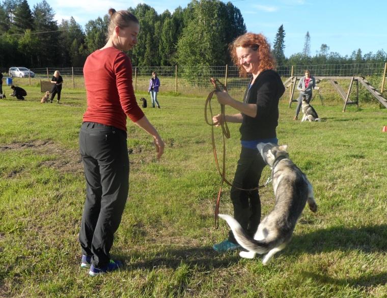Här ska vi träna inkallning. Jag agerar stolpe så får hundägaren gå iväg en bit och ropa in.