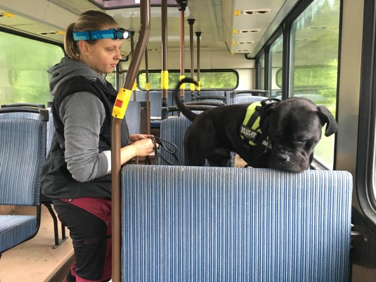 Vi sökte bland annat i en gammal buss.
